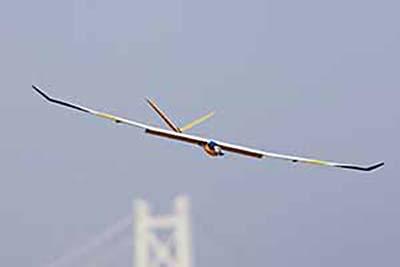 PILOT モーターグライダー カモミール ピンク ベーシック ARF 11273 (1.78m)