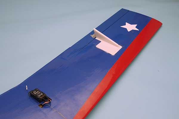 PILOT ファゲイラ(無尾翼機) 11326